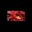 Sony KD-55XG8596B  4K Ultra HD Android TV 139cm